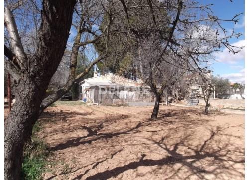 109 CASA Y TERRENO, LA LOSILLA